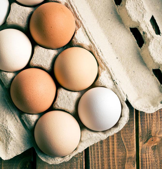 Allgemeine Fragen zur Eiern: weiße und braune Eier in einem Eierkarton